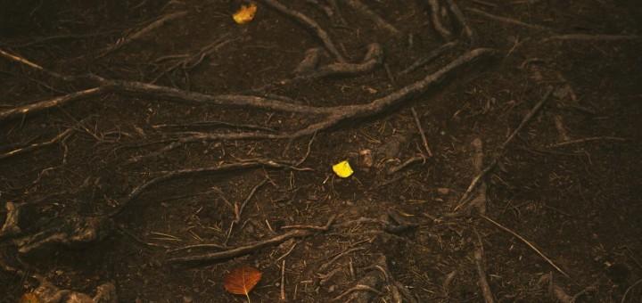 poem about fall season