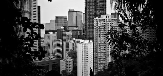 Hong Kong From the Hill