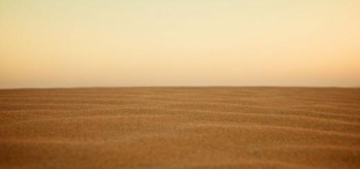 Desert Horizon, good fiction books