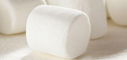 Delicious White Fluffy Round Marshmallows
