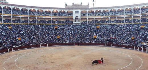 Bull Fight, short story about deceit