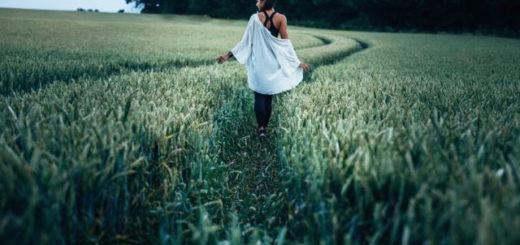 girl in a blue shirt walking in green wheat